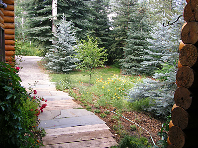 Sun Valley Vacation Home pathway from the front door